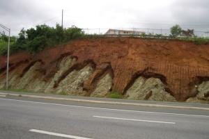 Meteorización de rocas produce el suelo.