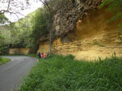 Roca caliza en Isabela.